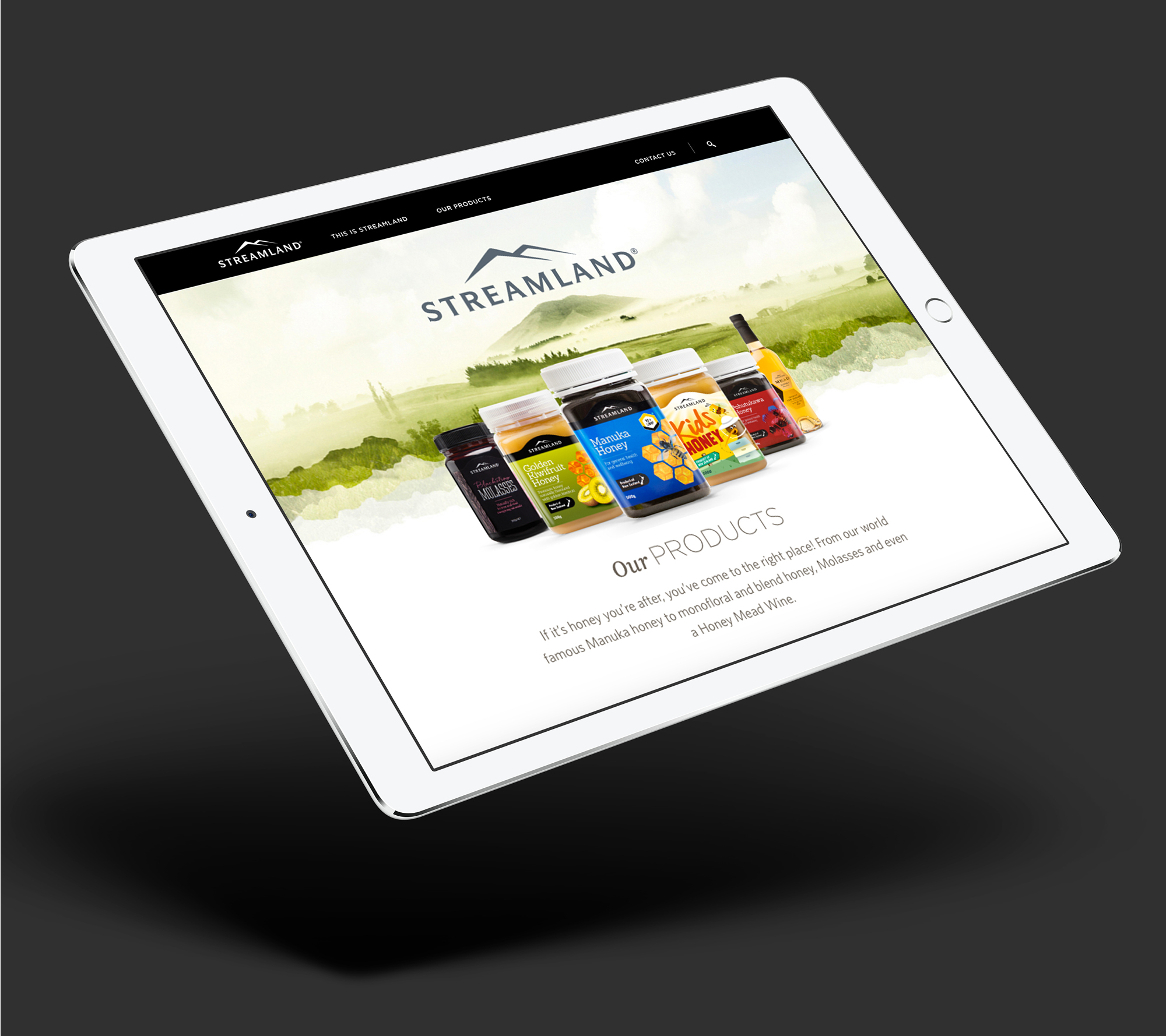 onfire design streamland honey digital website design auckland 2