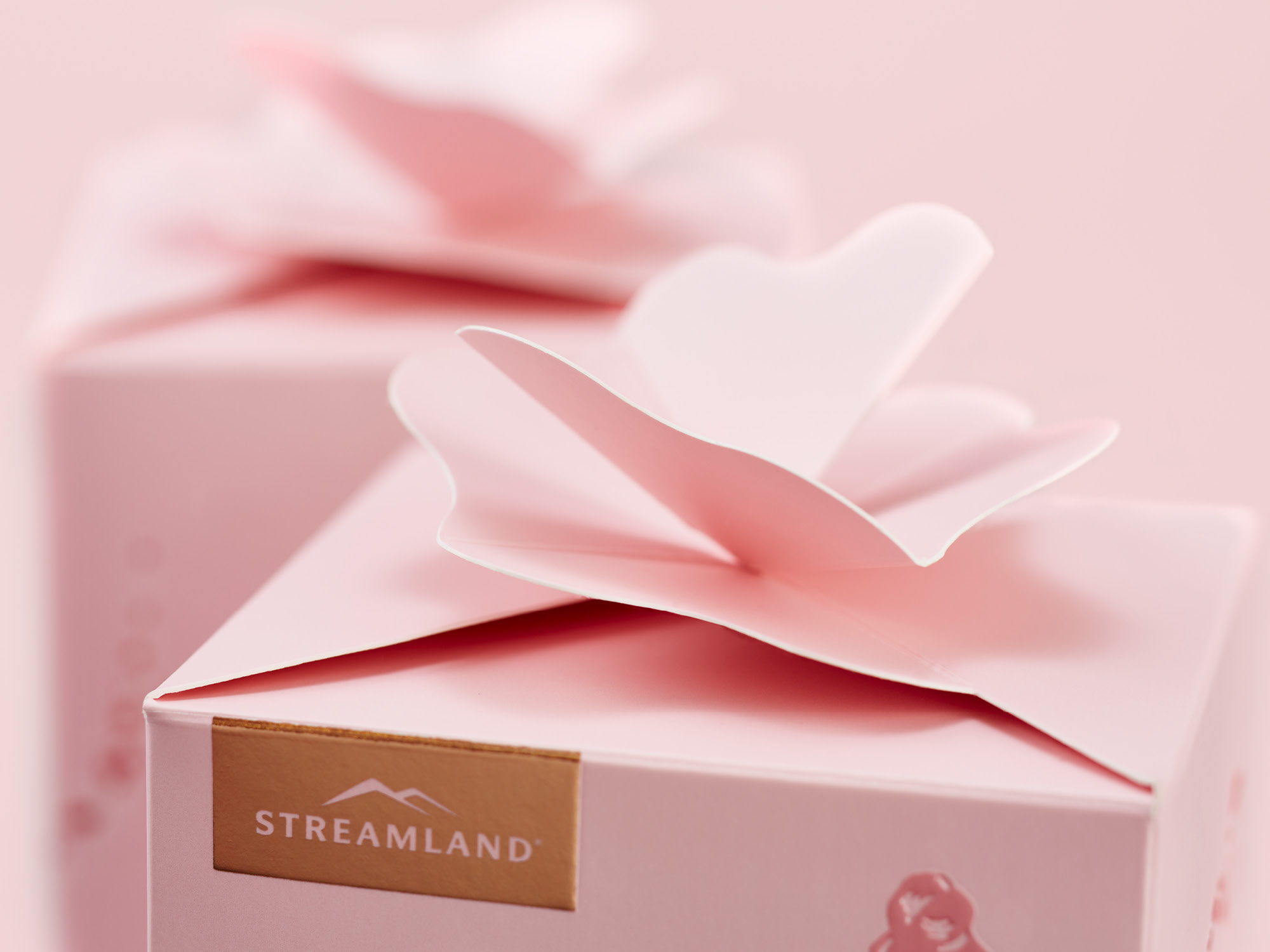 onfire deisgn streamland rose honey packaging design 19