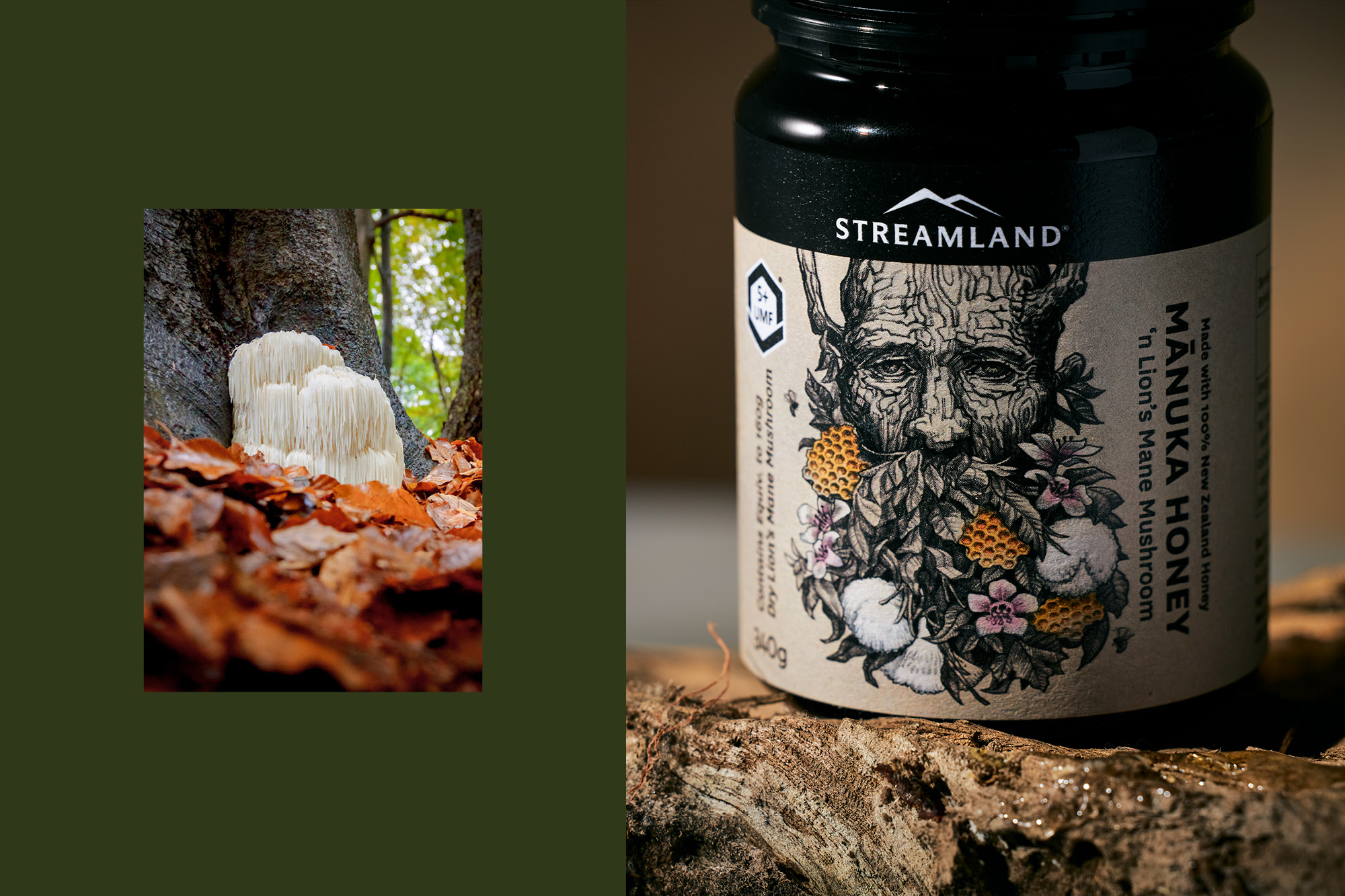 onfire design streamland lion mane manuka honey packaging design auckland 13